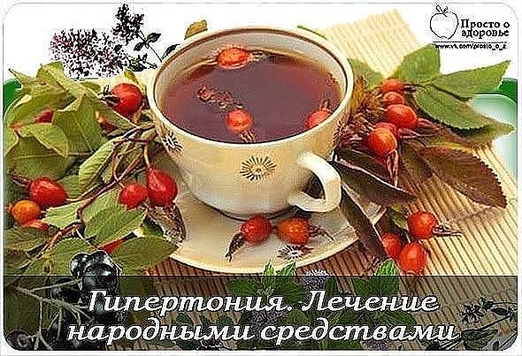 ayvovie-listya-lechenie-gipertonii